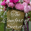 The Comfort of Secrets by Christine Nolfi
