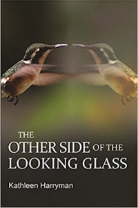 The Other Side of the Looking Glass by Kathleen Harryman