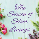 Daily Review: The Season of Silver Linings by Christine Nolfi