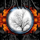 Tuesday Sampler: The Dark by David C. Cassidy
