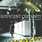My Review: Sufficient Certainty by Stephen Woodfin